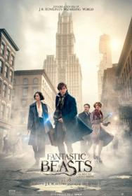 Fantastic Beasts and Where to Find Them (2016) 1080p BluRay x264 [Dual Audio] [Hindi DD 5.1 + English 5 1] ESubs - MRG