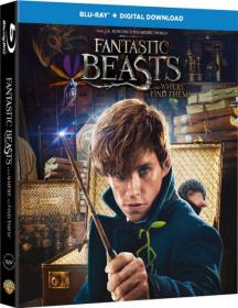 z - Fantastic Beasts and Where to Find Them (2016) - 720p - BluRay - [Telugu + Tamil + Hindi + Eng] - x264 - 1.3GB - ESub