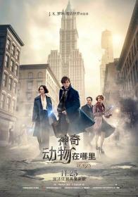 神奇动物在哪里 Fantastic Beasts and Where to Find Them 2016 BD1080P X264 AAC English&Mandarin CHS-ENG Mp4Ba