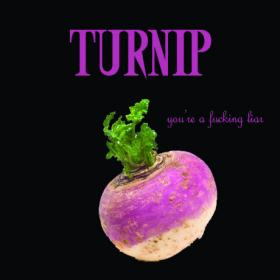 Turnip -2016- You're A Fucking Liar (EP) (FLAC)
