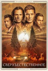 Supernatural_(s15)_NewStudio_NovaFilm_1080p