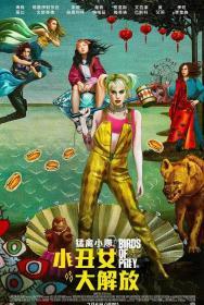 魅力社989pa com-哈莉·奎因:猛禽小队 Birds of Prey And the Fantabulous Emancipation of One Harley Quinn 2020 BD1080P X264 AAC 特效中英双字