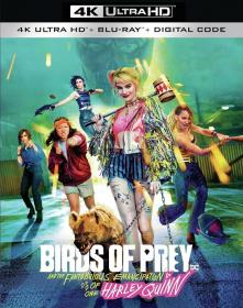 Birds of Prey and the Fantabulous Emancipation of One Harley Quinn 2020 D MVO BDREMUX 2160p DV HDR seleZen