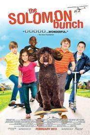 The Solomon Bunch (2013) 720p WEBRip X264 Solar