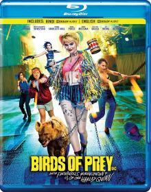 Birds of Prey (2020) 1080p BluRay 10bit HEVC x265 [Hindi DD 5.1 + English DD 5.1] EBSub ~ imSamirOFFICIAL