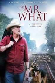 Mr  What (2015) [720p] [WEBRip] [YTS]