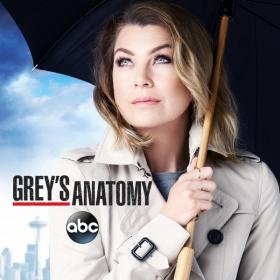 Grey's Anatomy web-dlrip_[teko]