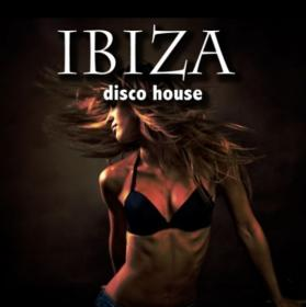 VA-Ibiza Disco House-2012