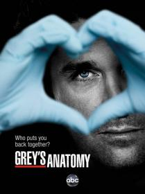 Greys Anatomy S09E20 HDTV x264 mp4