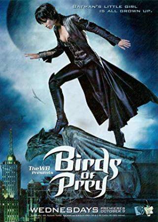 Birds of Prey (2020) 1080p 10bit Bluray x265 HEVC [DD 5.1 Hindi + DD 5.1 English] MSubs ~