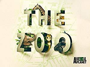 The Zoo 2017 S04E09 Fawns Become Friends 720p ANPL WEBRip AAC2 0 x264-BOOP[TGx]
