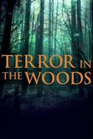 These Woods Are Haunted S02E06 The Hunted and Something Evil 480p x264-mSD[eztv]