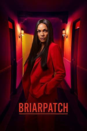 Briarpatch S01E10 WEBRip x264-XLF[rarbg]