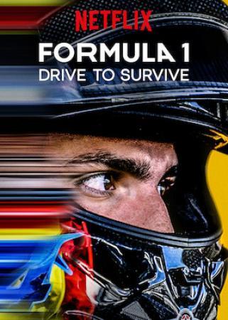 Formula 1 Drive To Survive (2019) S02 (1080p NF Webrip x265 10bit EAC3 5.1 - DNU)[TAoE]